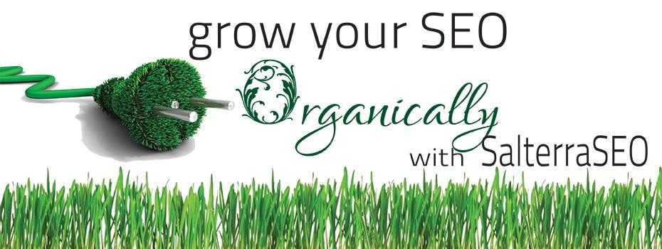 organic-seo-banner-1